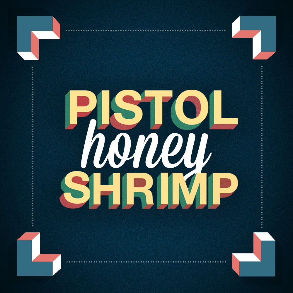Pistol Shrimp - honey