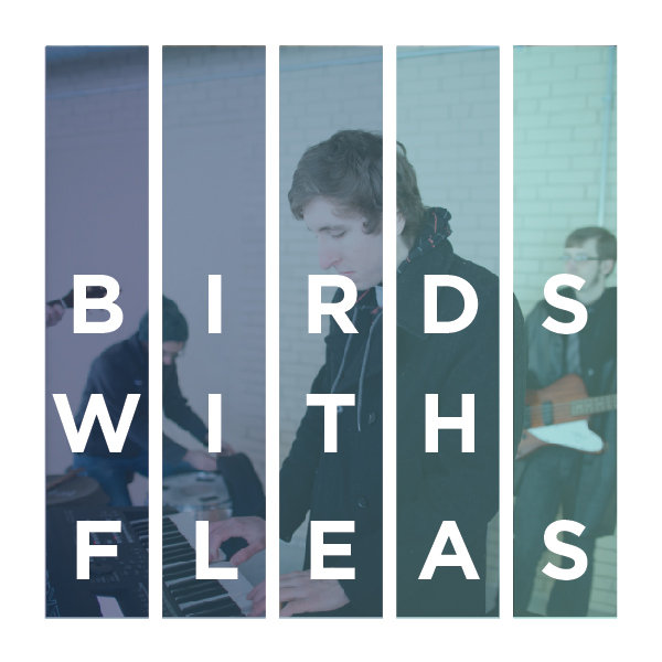 Birds With Fleas