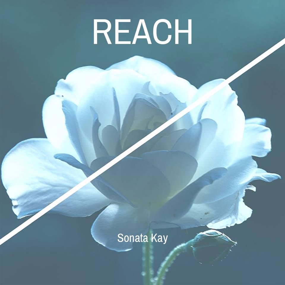 Sonata Kay ft. Novo - Reach